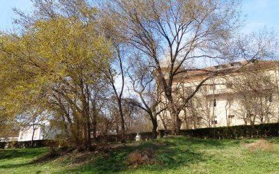 Vila Minerva din Techirghiol se va transforma in Complexul Medical Minova